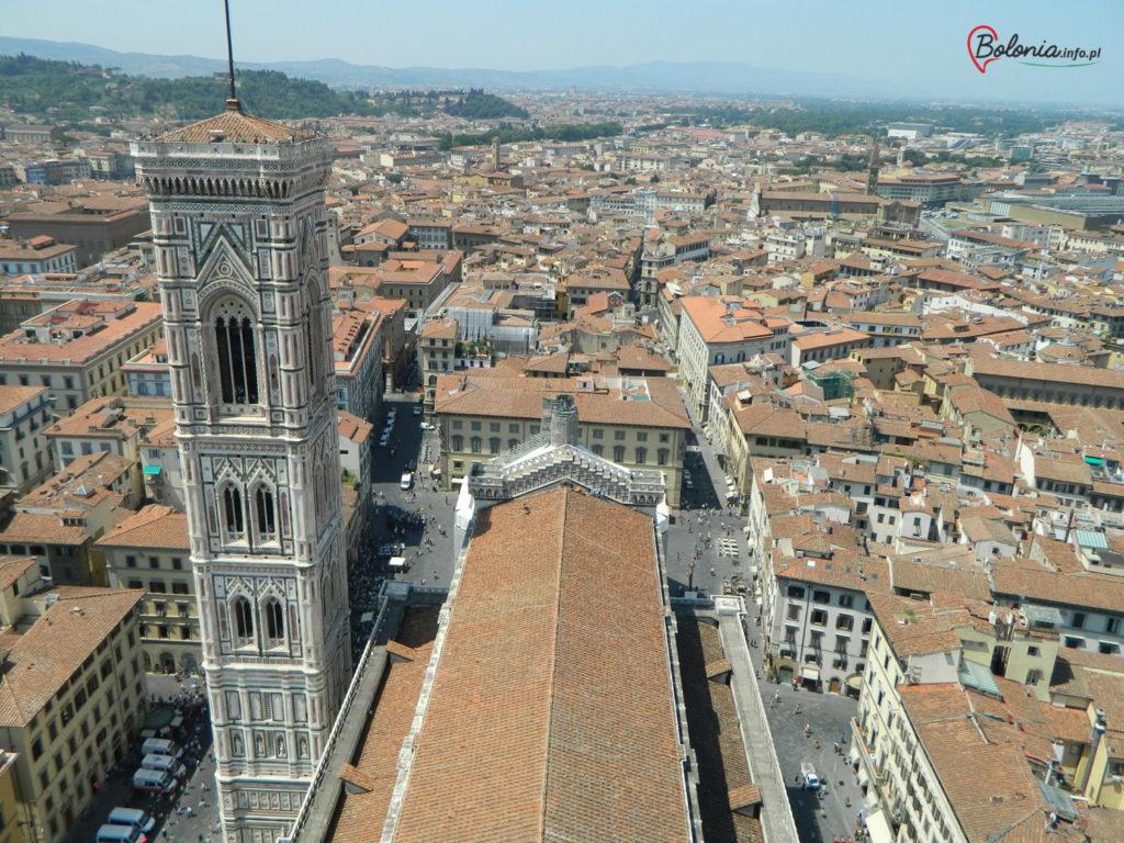 Widok z dachu katedry
